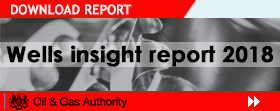 Wells Insight Report 2018