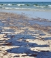 Halliburton urges rejection of BP appeal over 2010 Macondo oil spill
