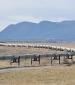 Penspen to prove viability of TAPI pipeline