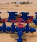 Serinus Energy has announced that the Winstar-12bis well was tied into the flowline and commenced extended production on December 10, 2014, in the Sabria Field in central Tunisia