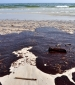 Chevron refutes Brazilian regulator's spill report
