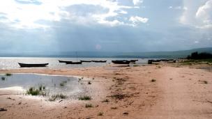 Oil of DRCongo reveals 3bn barrels of oil underneath Democratic Republic of the Congo
